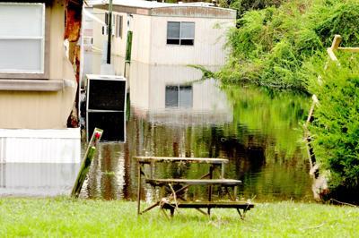 Newport flooding