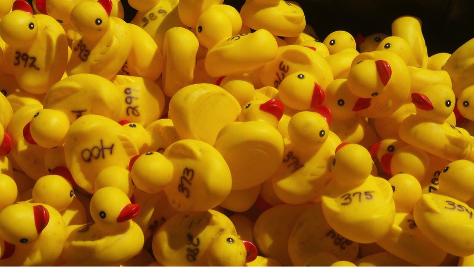Auburn Day and Duck Race | Food And Fun | carriagetownenews.com