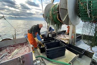 Commercial Fisherman Turns Haddock to Chowder for Food Banks