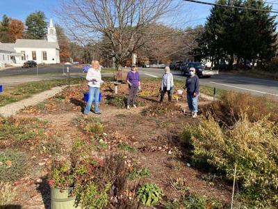 Putting the Monarch Garden to Bed