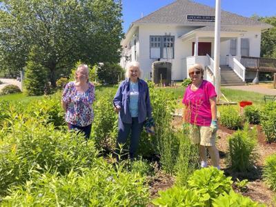 Garden Club Maintains Monarch Garden