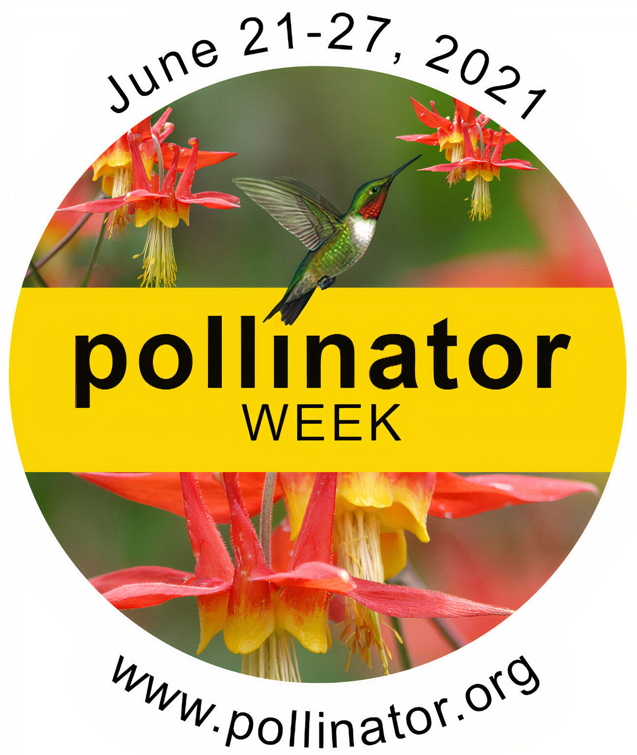 It's National Pollinator Week