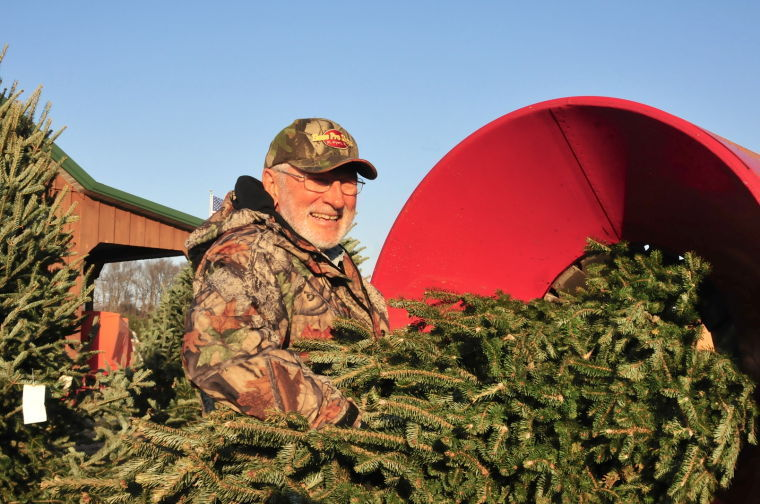 Pine Valley Christmas Tree farm celebrates 50 years ...
