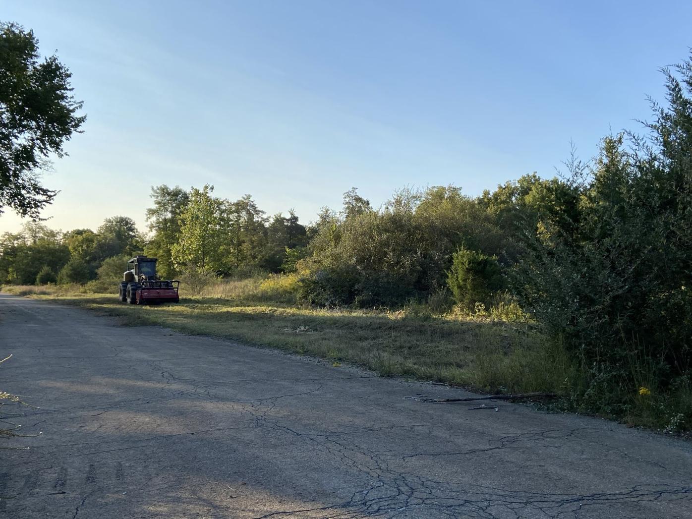 Site work begin at Bainbridge