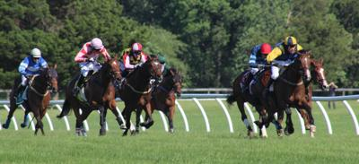 Fair Hill Races to be held at Laurel Park in May