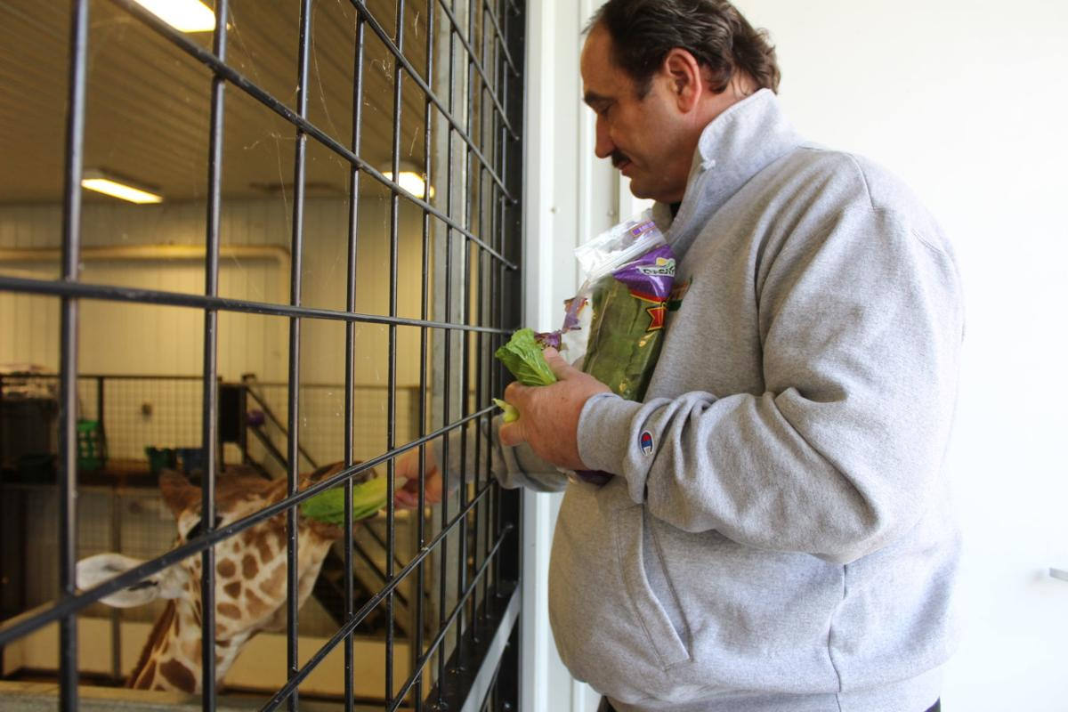 Plumpton Park Zoo closes, but needs help feeding its animals