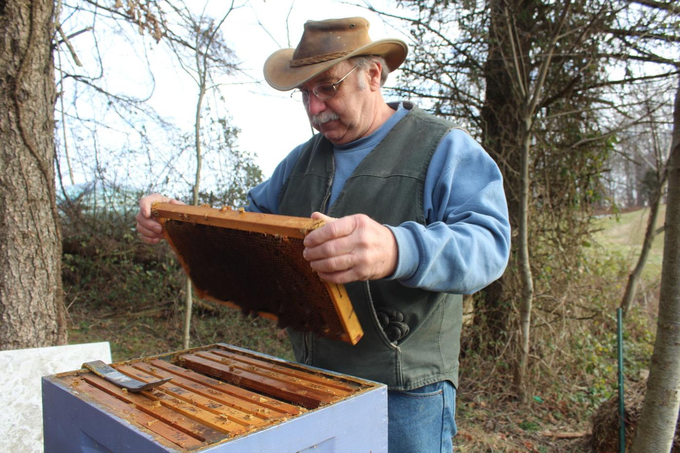 Susquehanna Beekeepers offer grant for young beekeepers to get started