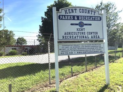 Kent County Fair moves to an online format, livestock auction opens today