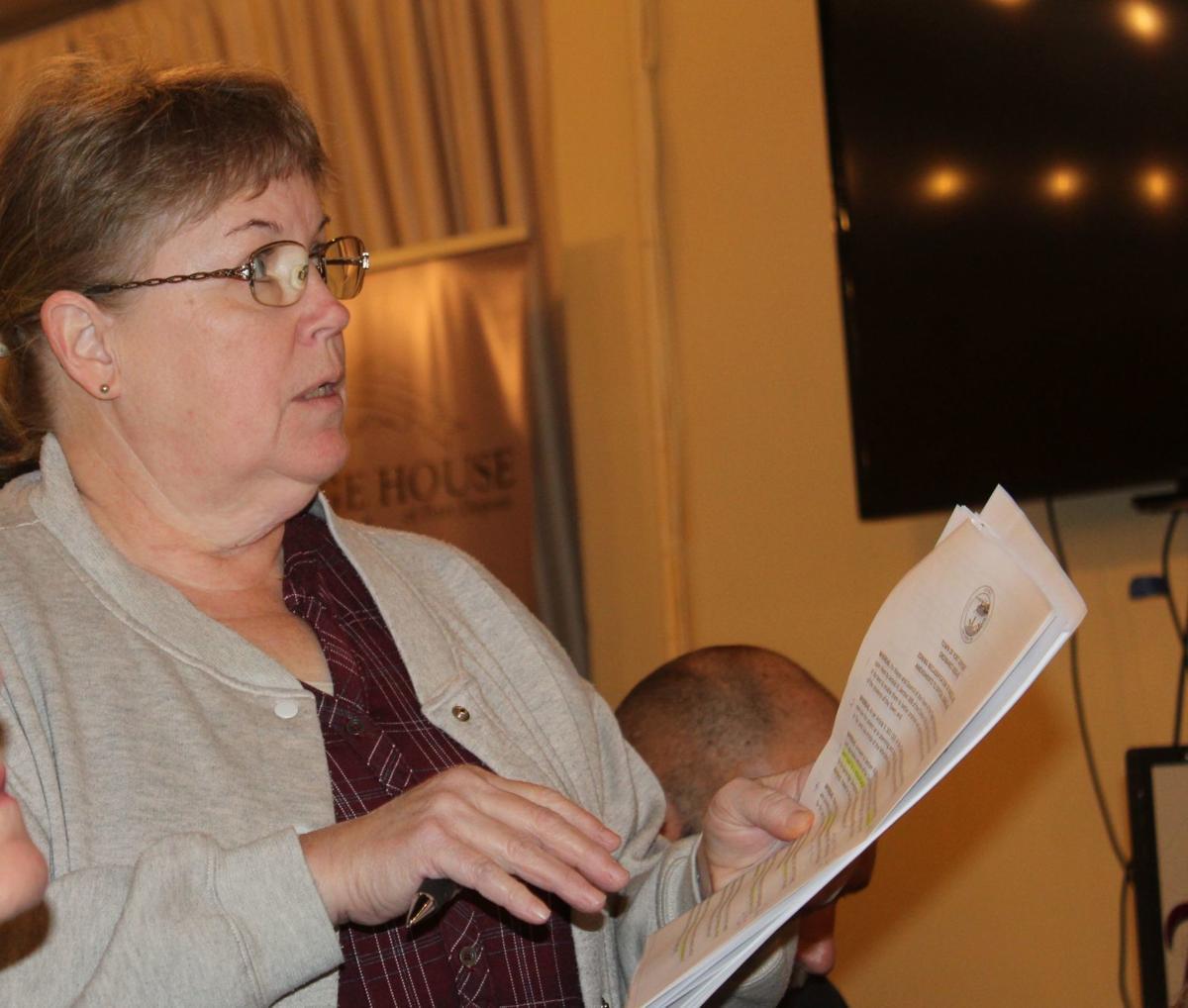Port approves zoning changes ahead of Bainbridge development