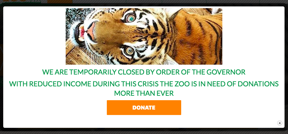 Plumpton Park Zoo closes, but still needs to feed 200+ animals