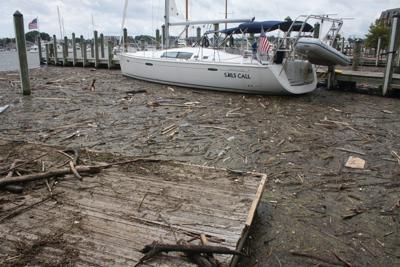 Clean Water Goals-Chesapeake