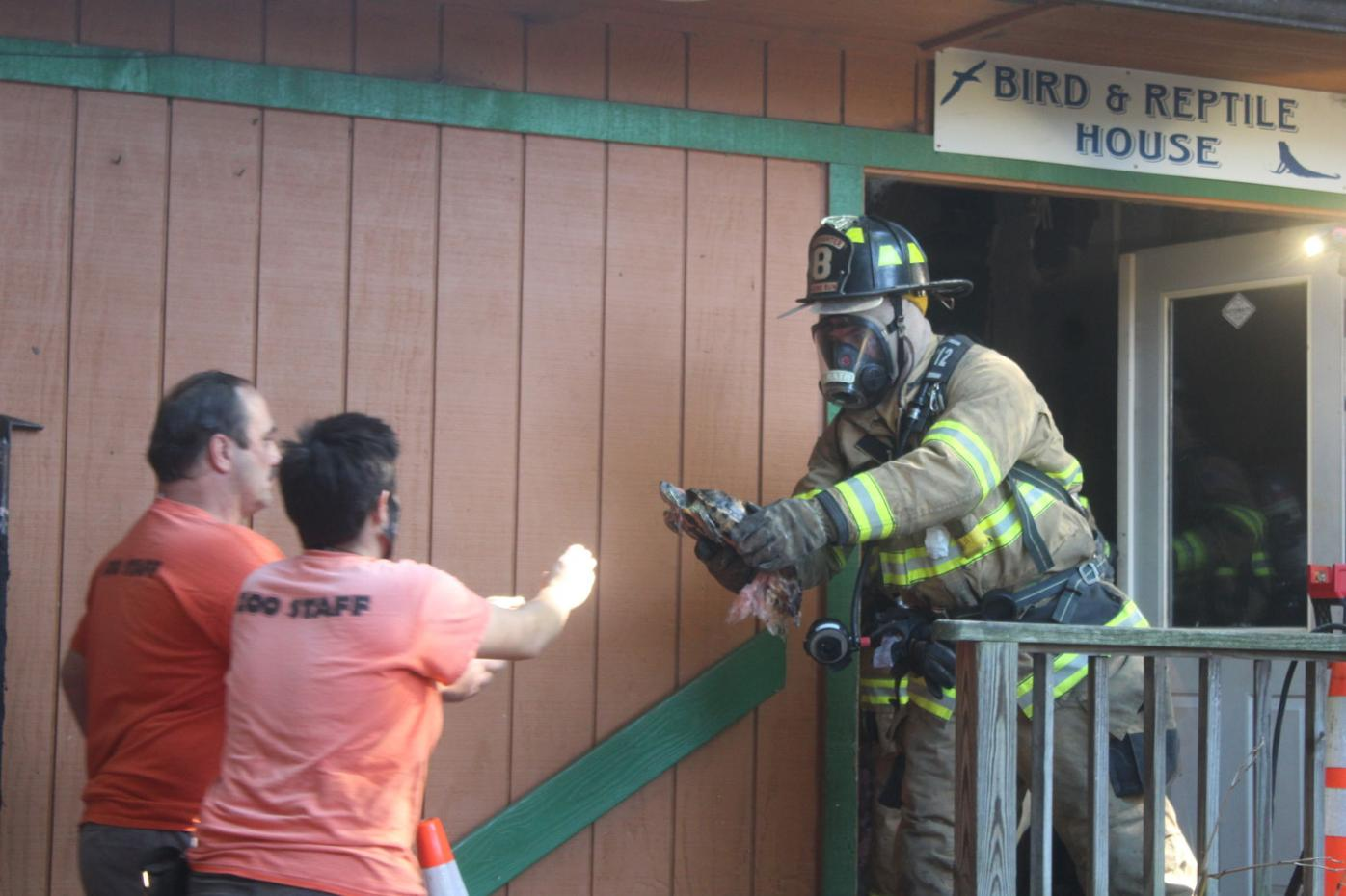 Plumpton Park Zoo recovering from fatal fire