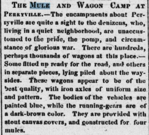 Mule and wagon camp