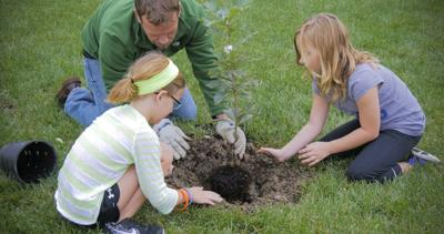 Delmarva Power and Arbor Day Foundation offer free trees