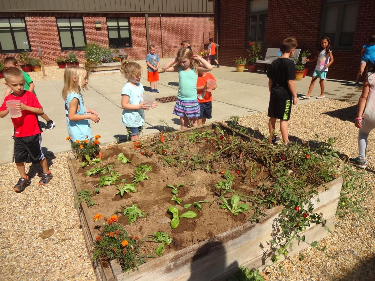 Three county schools named 2017 green schools | Schools | cecildaily.com