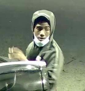 Elkton vehicle thefts
