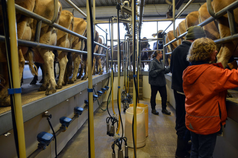Md. bill would OK raw milk sales