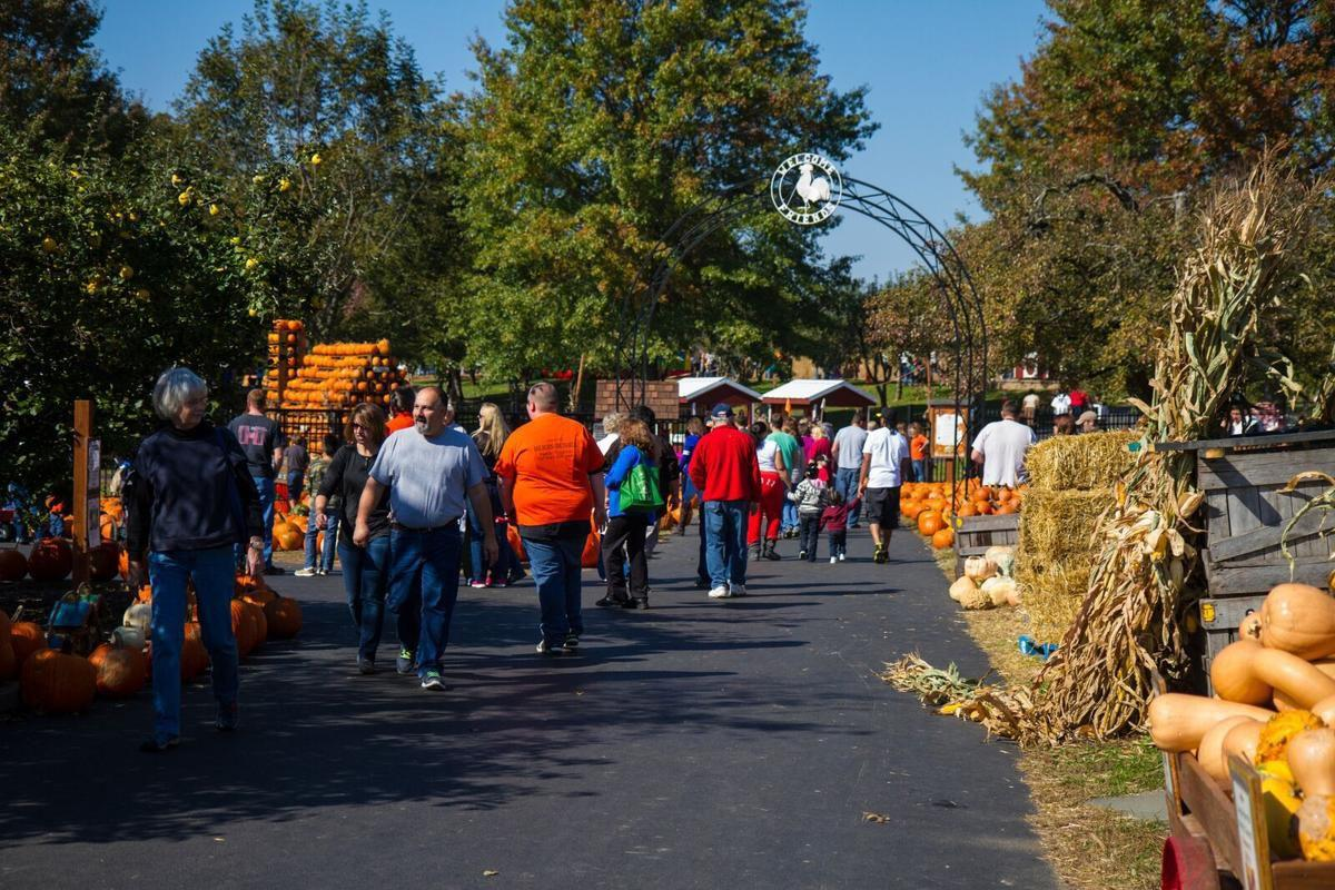 Fall Festival Weekend