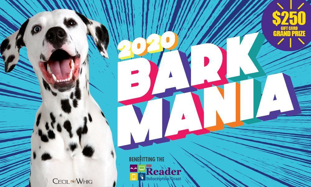 Bark Mania 2020 header