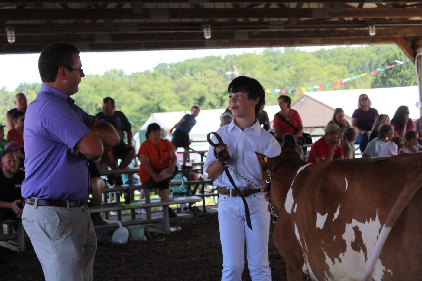 Fitting & Showing is one of many 4-H competitions at the Cecil County Fair