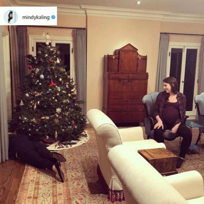 mindy kalings christmas cat battle - Celebrities Christmas Decorated Homes
