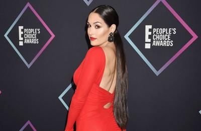 Nikki Bella's brother found her sex toy collection