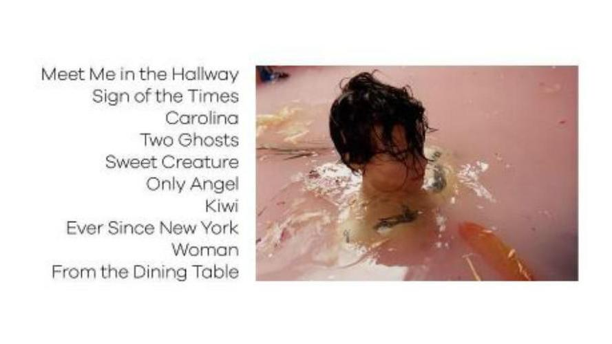 Harry Styles Solo Album Tracklist And Release Date