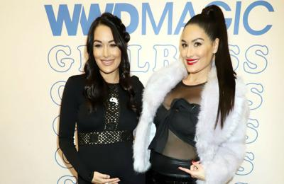 Brie and Nikki Bella had to evacuate homes due to the Californian wildfires