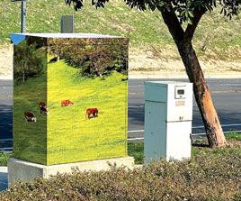 Cows grazing on the hillside