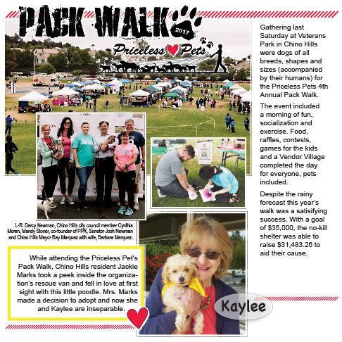 Priceless Pets Pack Walk 2017   Pet Paparazzi