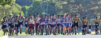 Chino and Don Lugo high school cross country runners