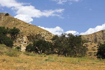 Chino Hills State Park photo