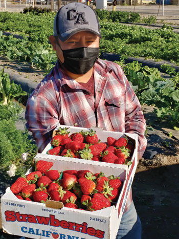 Farm manager Domingo Roldon