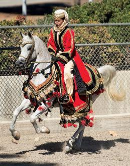 Cal Poly arabian horse show