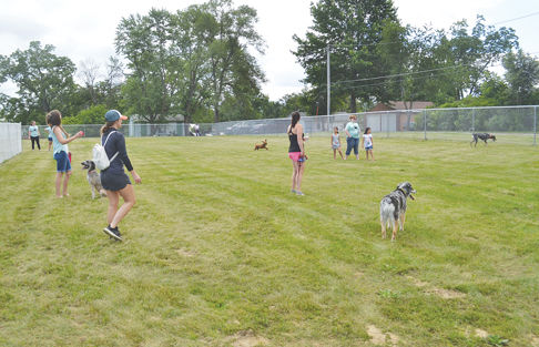 Dog Park is now up and running