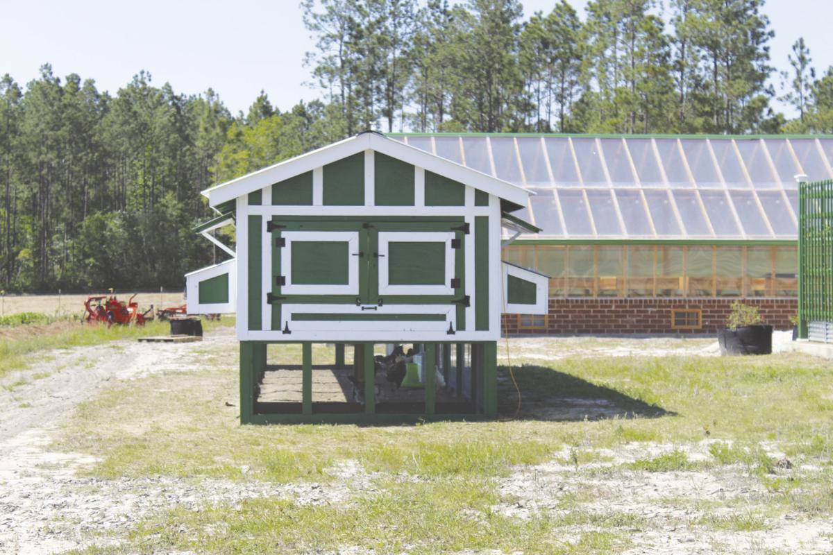 Charlton County home to  innovative organic farm