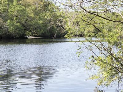 Annual St. Marys River cleanup slated for April 24