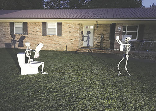 Introducing the Skelly Family