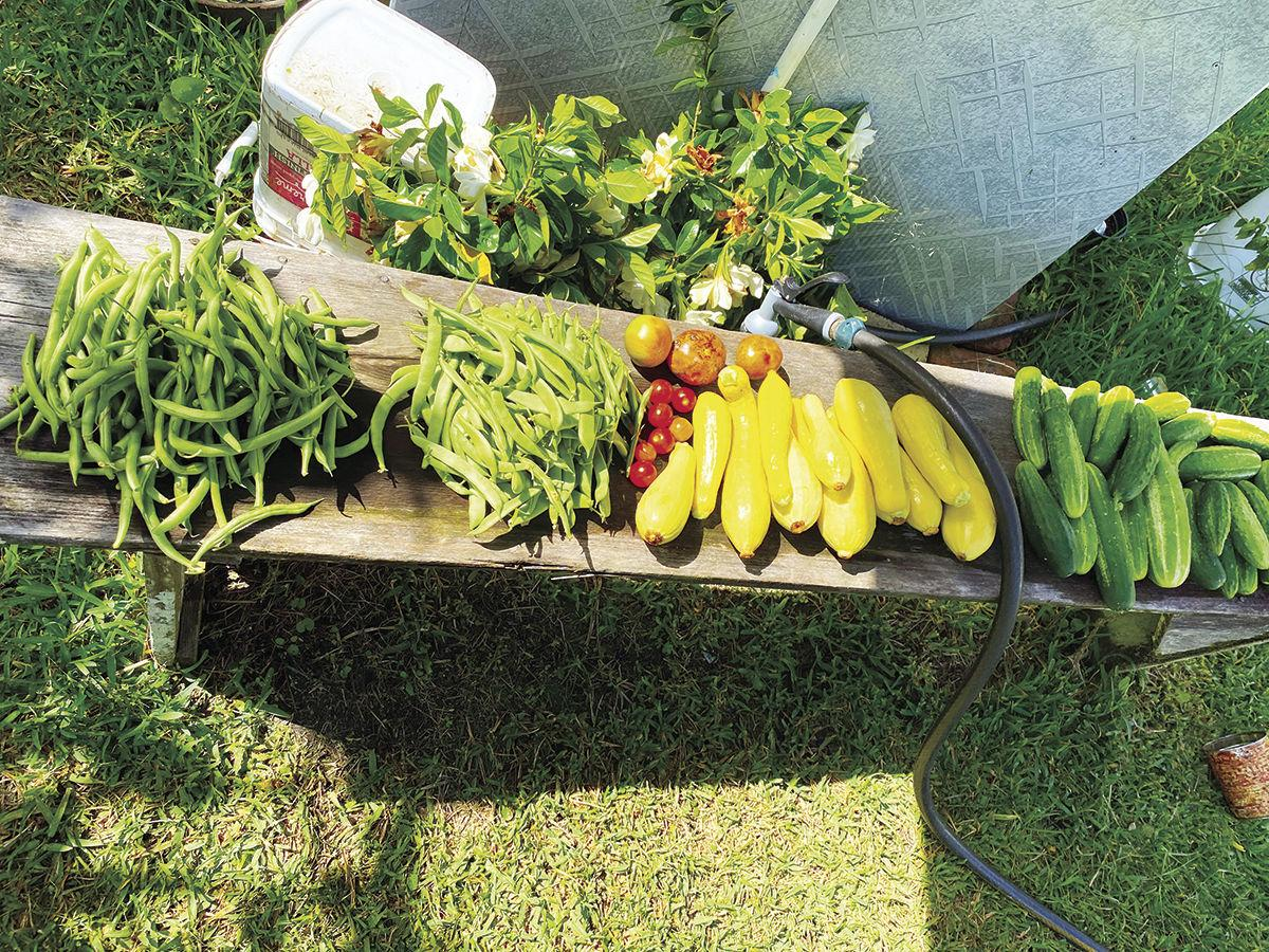 Nell Seeney grows  veggies, dishes up love