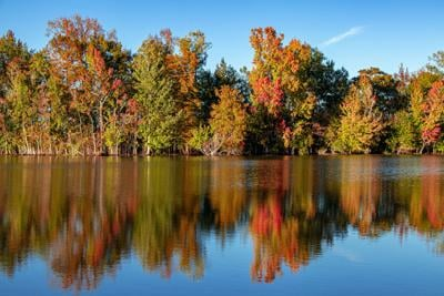 Cruisin' for Color: Your ETX Guide To Fall Foliage