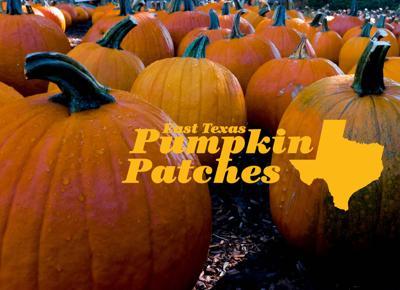 East Texas Pumpkin Patches