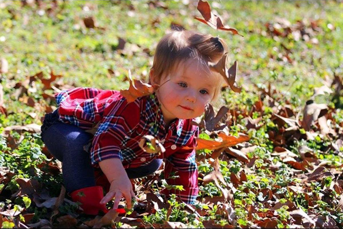 Amelie Leaves