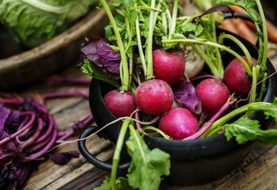 Cool Season Vegetable Gardening
