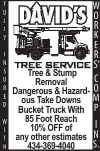 David's Tree Service