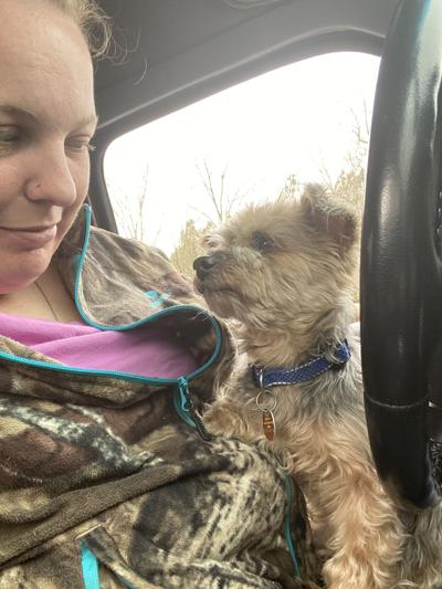 Yorkie reunited with owner after being thrown out of car into Danville street