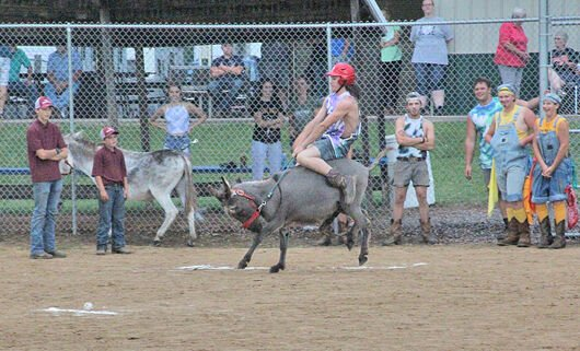 DonkeyBaseballRace