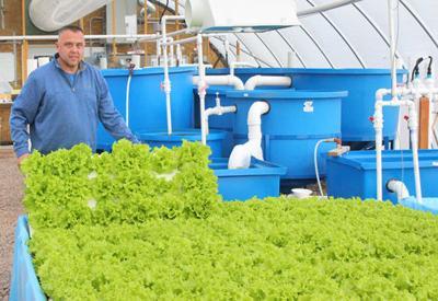 Green_Leaf_Farms