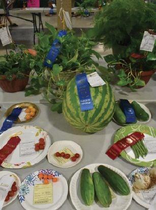 Deadline approaches for Grady County Free Fair entries