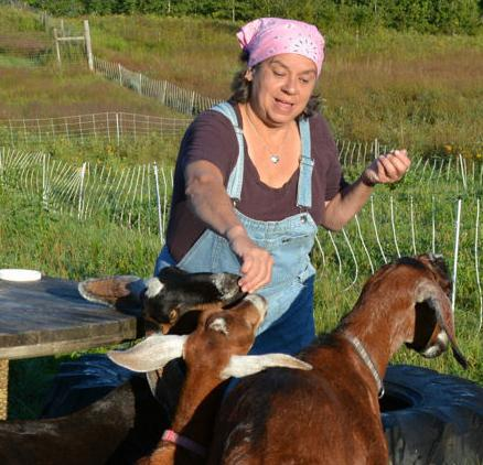 Meg and goats