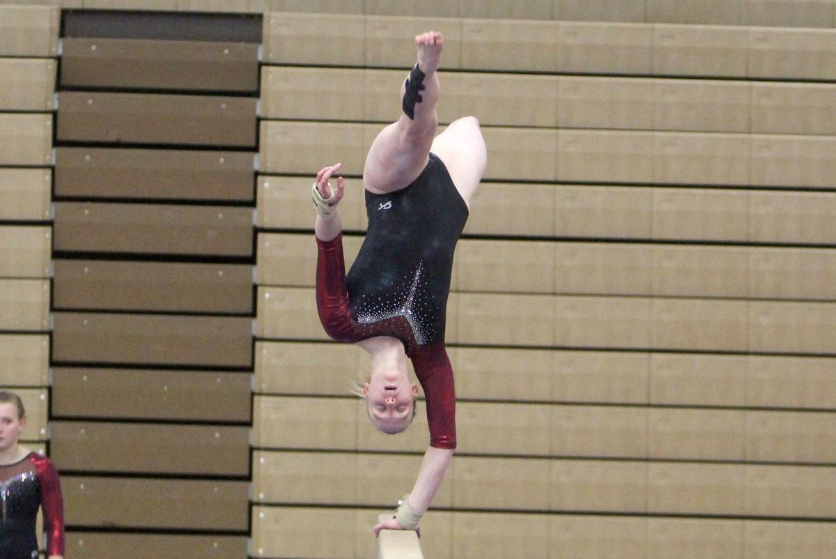 Chi-Hi Gymnastics Triangular 1-17-19